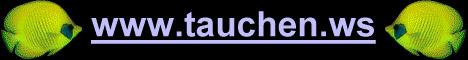 selbstständig tauchen divingcenter spiro sub elba bequemes tauchen vom schiff , kompressor an bord, ausrüstung kann auch an bord belassen werden bis zu 20 prozent günstiger wenn sie über unsere seite buchen padi kurse beginnerkurse schnuppertauchen padi kurse auf deutsch auch online