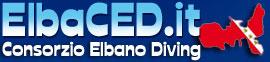 elbaced-logo